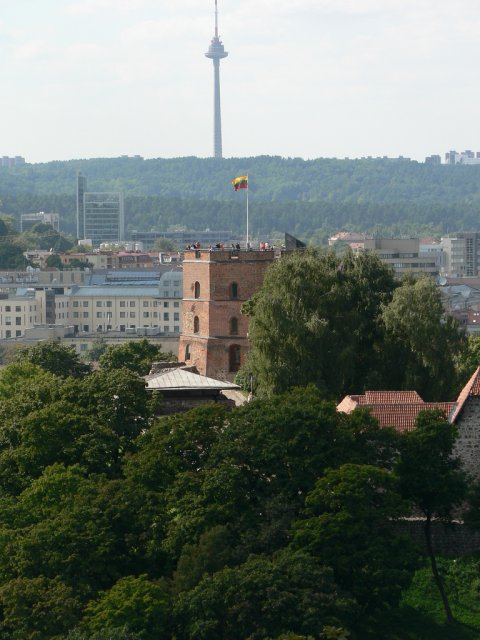 Башня Гедимина, Литва