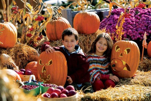 Празднование Хэллоуина в Брунсвике, Канада