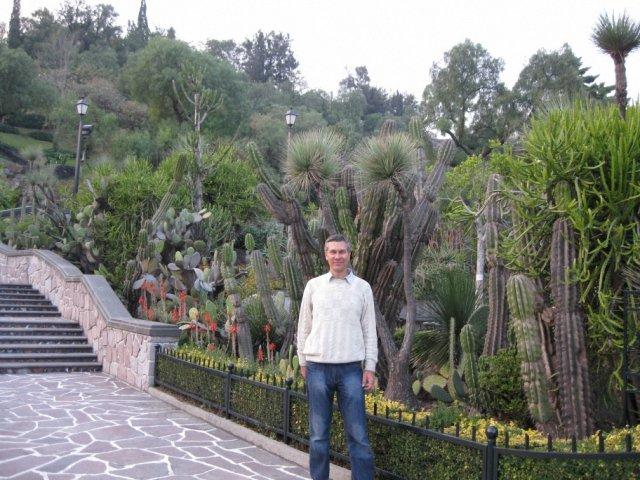 Кактусы, Мексика