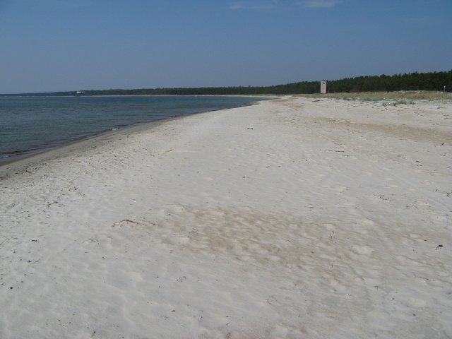 Пляж Клоога недалеко от Таллина, Эстония