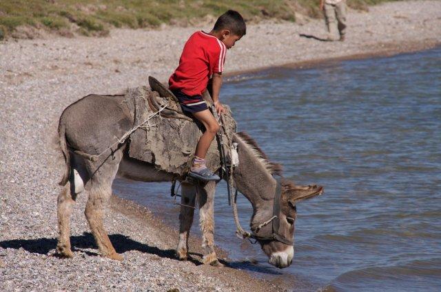 Местные жители, Киргизия