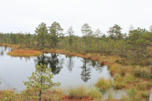 Национальный парк Лахемаа, Эстония