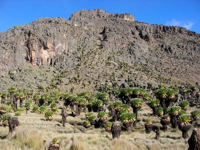 Гора Кения в национальном парке Самбуру