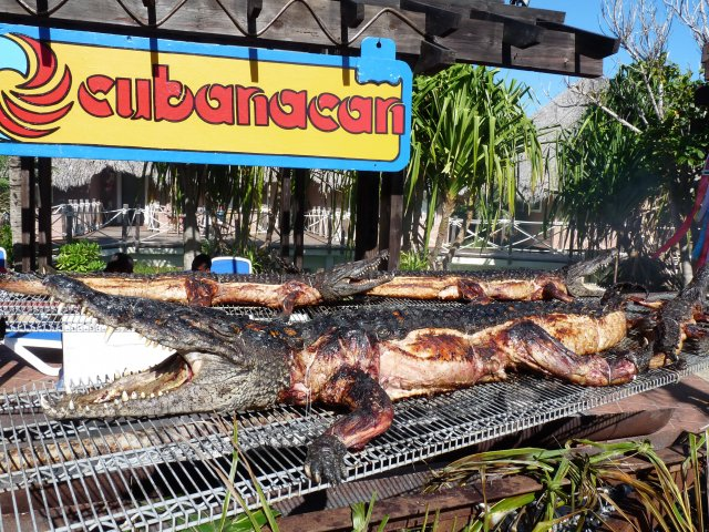 Блюдо из крокодила, Sandals Royal Hicacos 5*, Варадеро