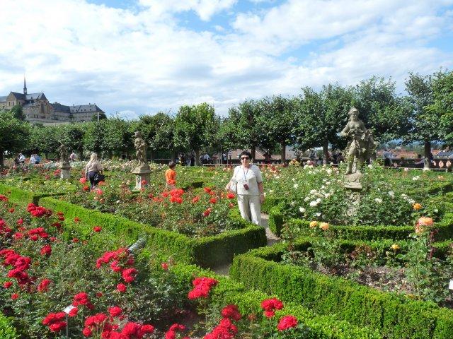 Сад роз в Бамберге, Чехия