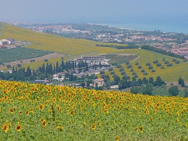 Пинето, Италия