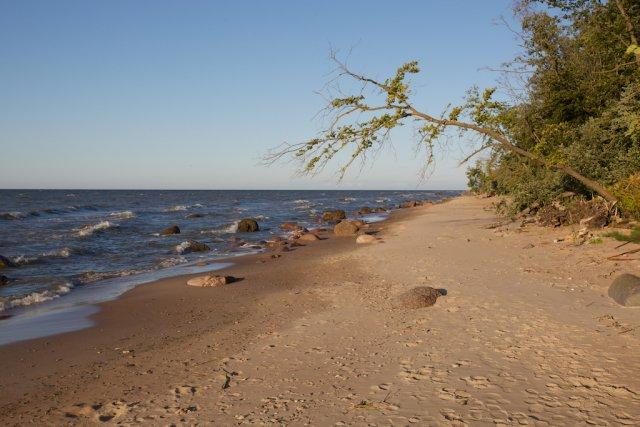 Пляж Сака на северо-востоке Эстонии