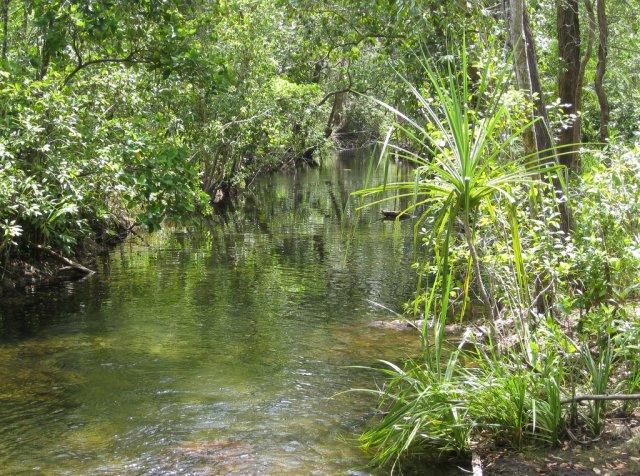 Река в Австралии