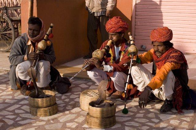 Заклинатели змей в Джайпуре, Индия