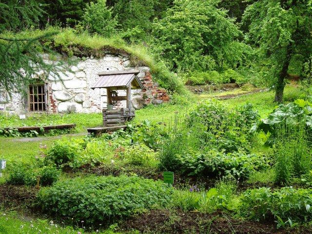 Ботанический сад, Соловецкие острова, Россия