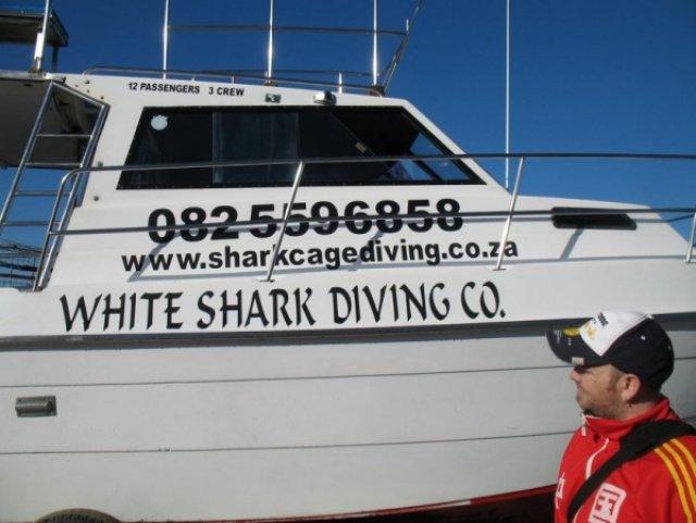 Лодка на которой плыли к акулам
