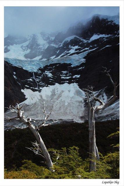 Вид на ледник Glacier Del Frances
