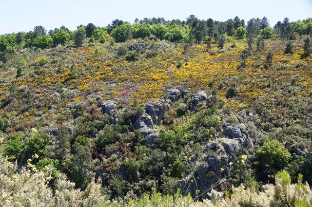 Природа северной Испании