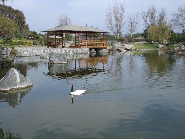Японский сад в Ла-Серене, Чили