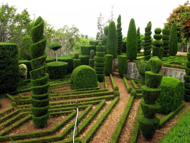 Ботанический сад, Мадейра