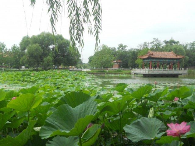 Танганцзы, Китай