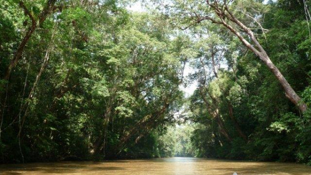 На реке Тахань