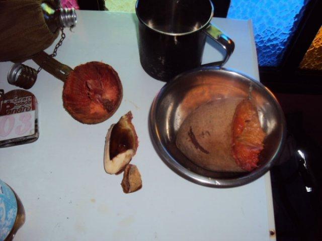 Шоколадный фрукт сапоте, Венесуэла
