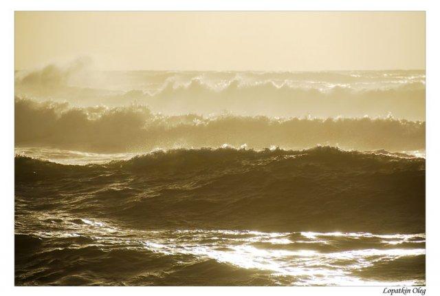 Предзакатный прибой Тасманова моря