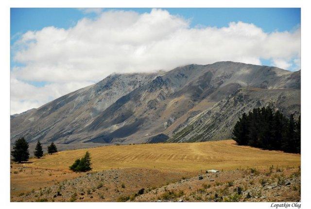 Местечко, неподалеку от озера Текапо, Новая Зеландия