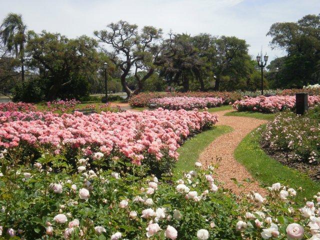 Парк Роз, Буэнос-Айрес