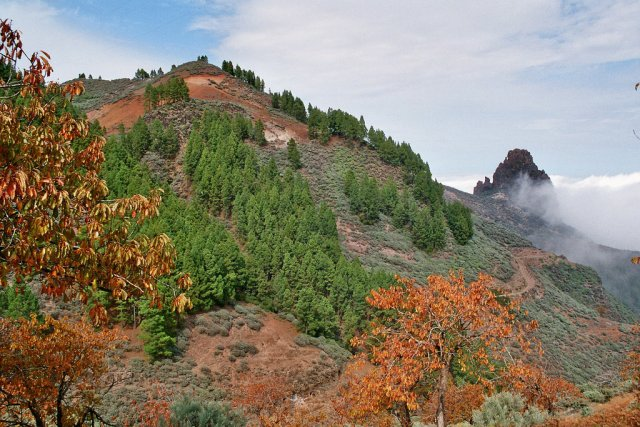 Гора Пико-де-лас-Ньевес, Гран-Канария