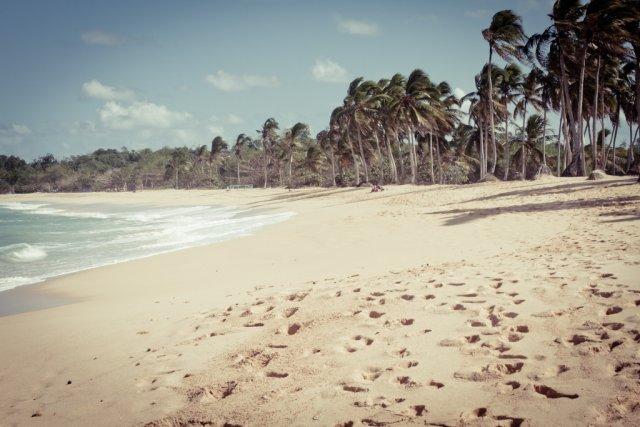 Пляж Макао, Пунта-Кана