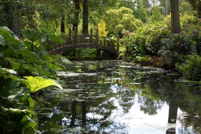 Ботанический сад Южного Китая, Гуанчжоу