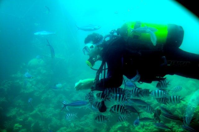 Подводная лодка Синдбад, Хургада