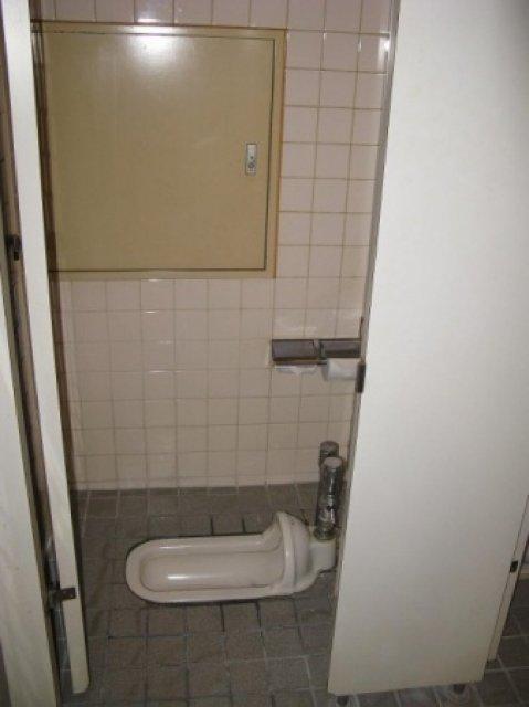 """Туалет системы """"очко"""""""