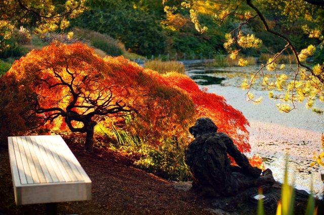 Ботанический сад Ван Дусена, Ванкувер