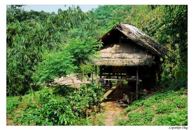 дом местных жителей