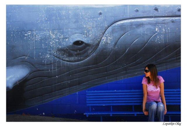 Девушка и кит, автобусная, Регион озера Текапо и озера Александра остановка в Кайкоре