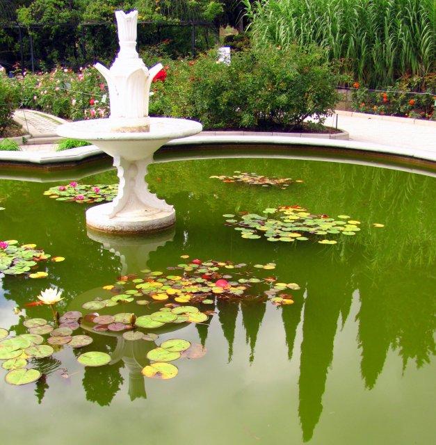 Ботанический сад в Никите
