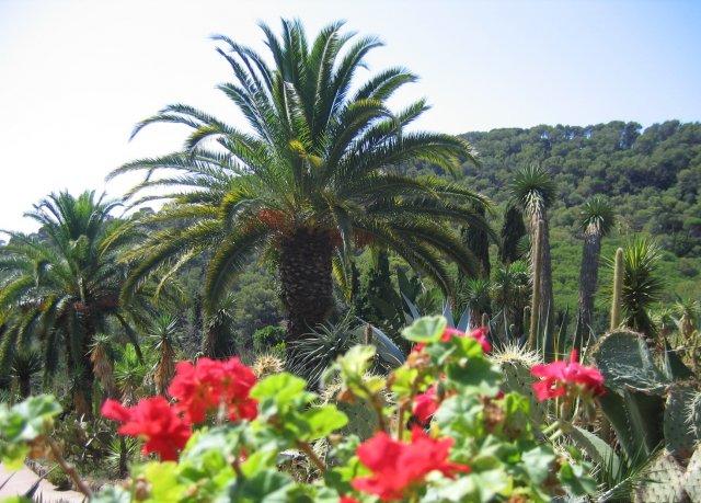 Бланес. Ботанический сад