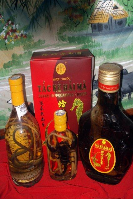 Настойки на змеях и на лечебных корнях - сувенир из Вьетнама