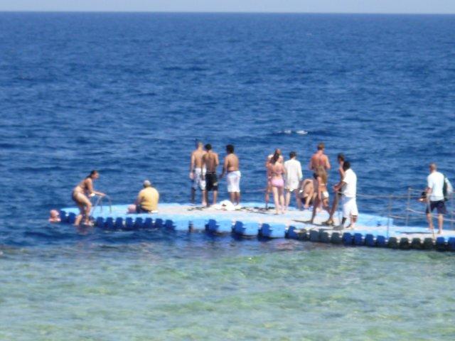 Пляж отеля «Sol Verginia»
