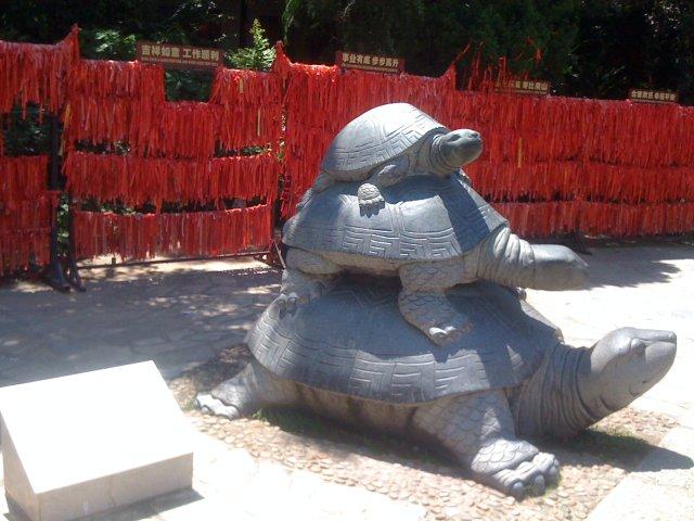 Центр Буддизма, черепаха - символ долголетия