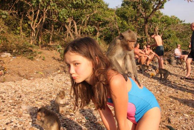 на острове обезьян кормили наших братьев меньших