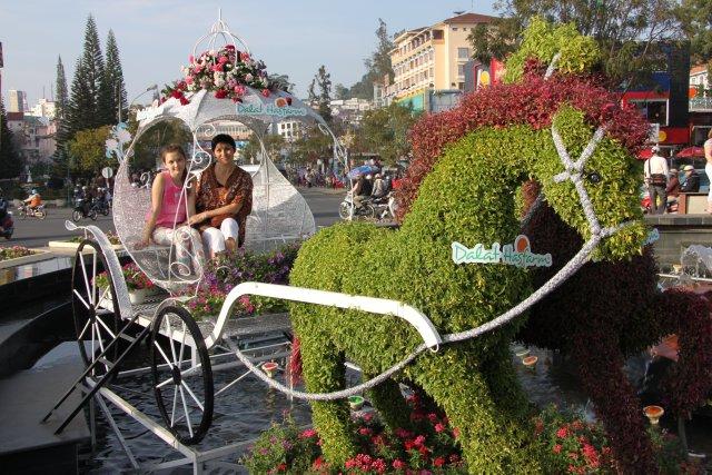фестиваль цветов в г.Далате