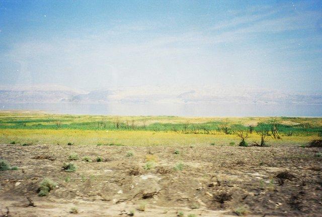 Здесь стояли Соддом и Гоммора на берегу Мёртвого моря.