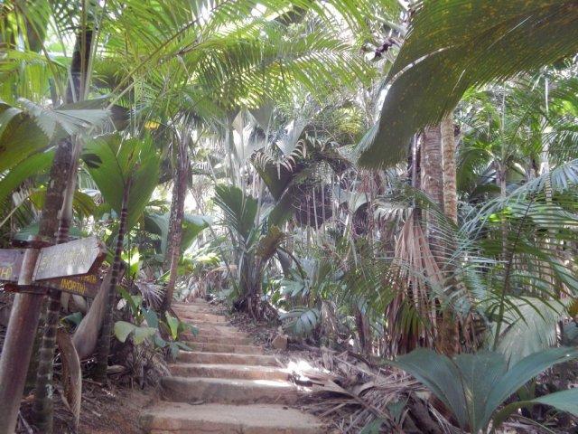 Ботанический парк на Праслен.
