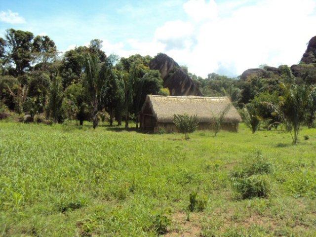 Деревня индейцев пиароа, Венесуэла