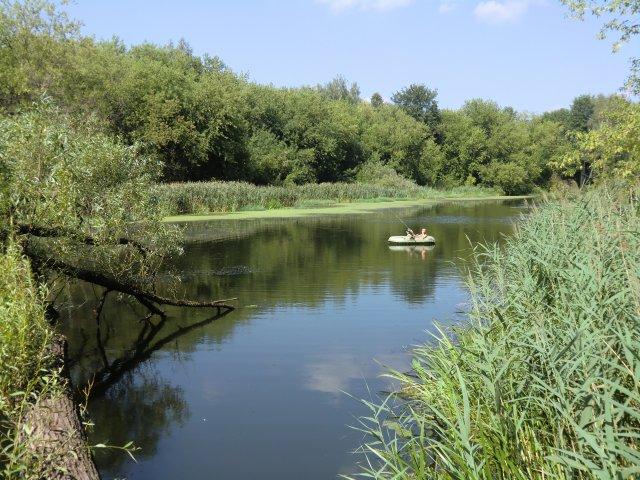 Река Сестра в посёлке Майданово. 30.07.2010.