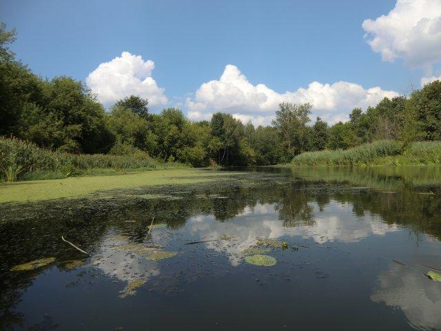 Клин. Река Сестра в посёлке Майданово.