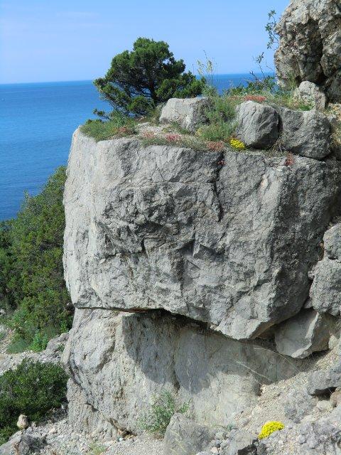 На скалах у моря...