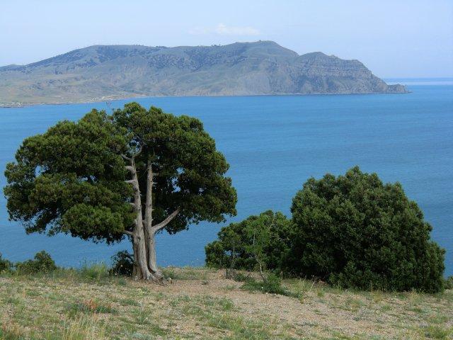 Природа Восточного Крыма: залив, мыс Меганом...