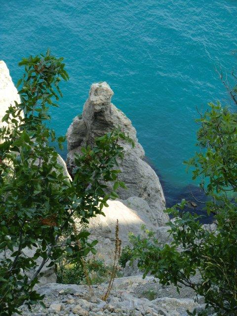 Скалистые берега Нового Света.