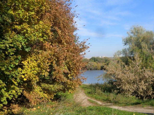 6 октября 2013. Москва-река в Коломенском.
