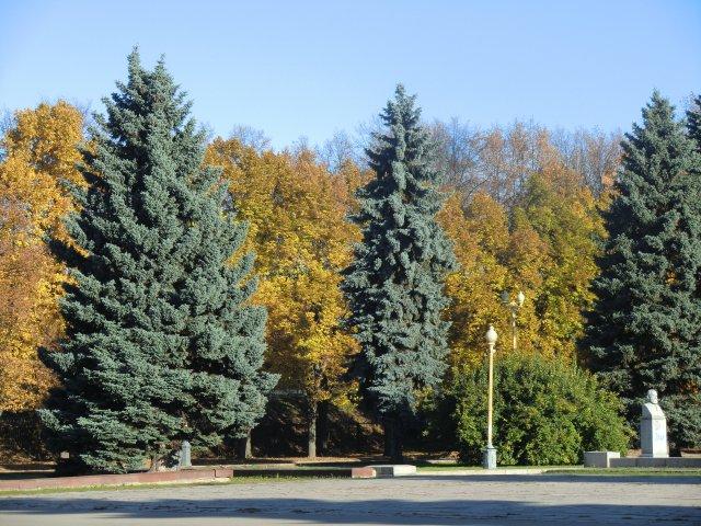 Около Московского университета. 13.10.2013.